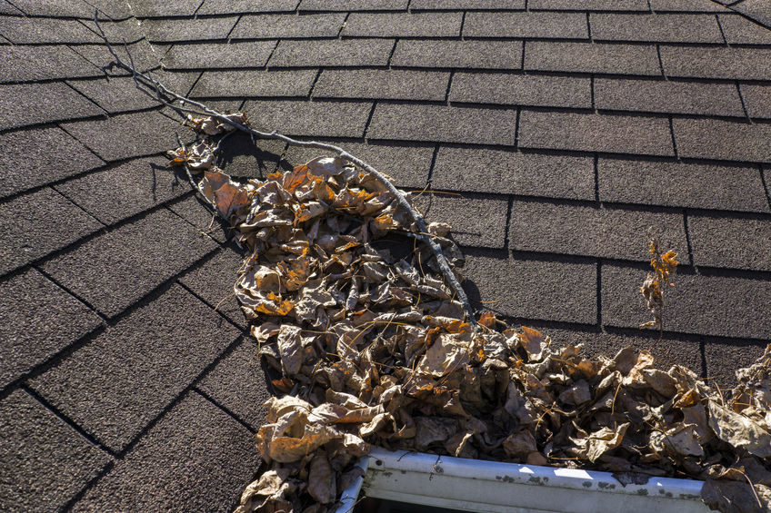 Dallas roofing contractor will clean your roof